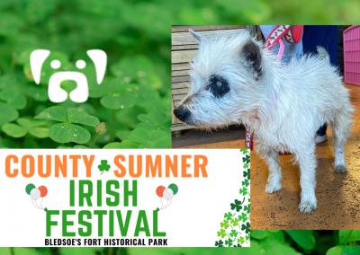 County Sumner Irish Festival