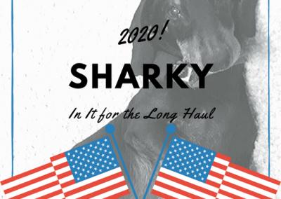 Sharkey 2020